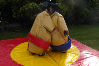 Sumo Suits bouncy castle hire small 7