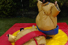Sumo Suits bouncy castle hire small 8